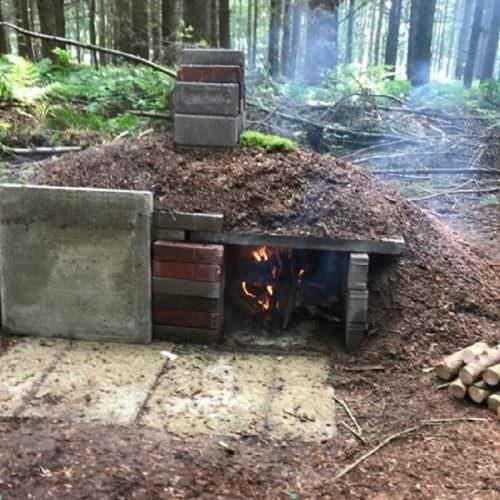 Natural survivor -woodlands header image