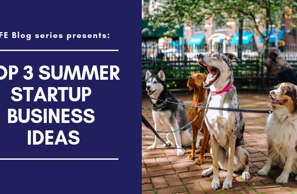 Top 3 Summer Startup Business Ideas